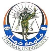 Thamar University